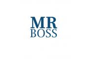 MR. BOSS